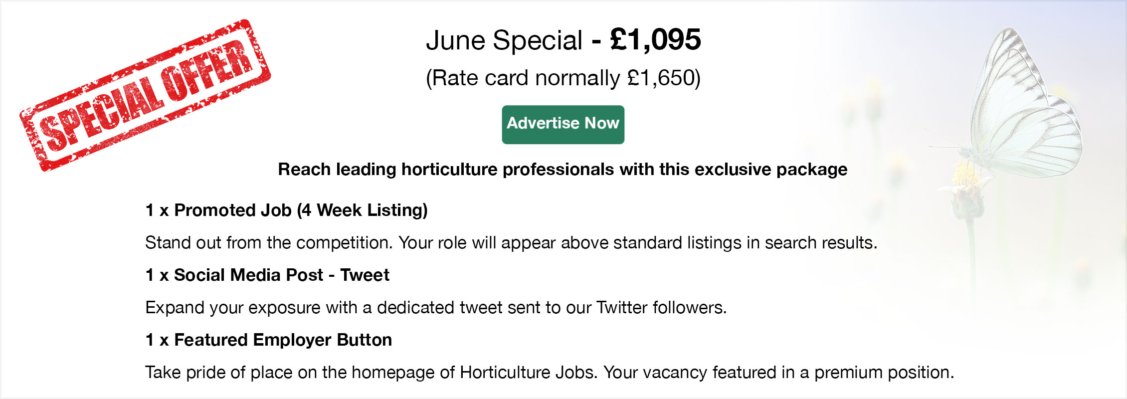 Special Offer. June Special - £1,095 (Rate card normally £1,650). Advertise Now. Reach leading horticulture professionals with this exclusive package. 1 x Promoted Job (4 Week Listing). Stand out from the competition. Your role will appear above standard listings in search results. 1 x Social Media Post - Tweet. Expand your exposure with a dedicated tweet sent to our Twitter followers. 1 x Featured Employer Button. Take pride of place on the homepage of Horticulture Jobs. Your vacancy featured in a premium position.